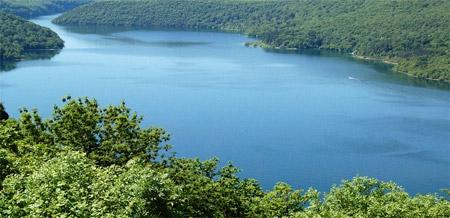 poissons lacustres,échantillonnage ichtyologique,comparaison d'échantillons,retenue de barrage,échantillonnage,lac de vouglans,retenue de vouglans