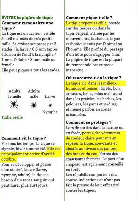 Plaquette-tiques_2-450.jpg