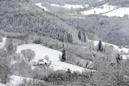 Delfino-Fondereau-hiver_01-450.jpg