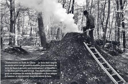 Charbonnière-en-forêt-de-Chaux-450.jpg