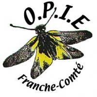 sauterelles,grillons,criquets,orthoptères,franche-comté