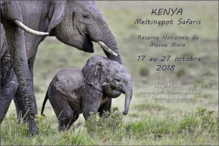 KENYA-2018-450.jpg