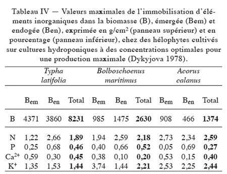 limnologie,macrophytes lacustres,écosystèmes lacustres,fonctionnement