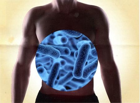 1-microbiote-intestinal-450.jpg