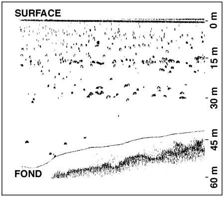 Figure3_echosondage-Leman-450.jpg