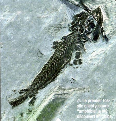 dinosaures,jura,jurassique