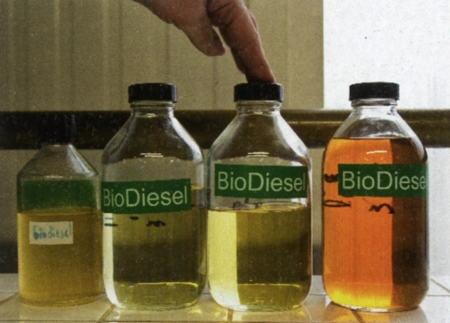 Biodiesel3-1.jpg