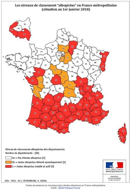 Aedes-albopictus-en-janvier-2018-450.jpg