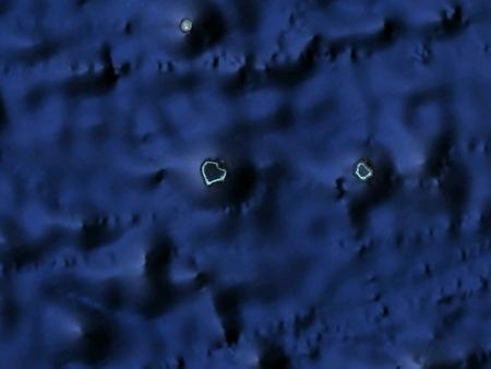 01-Atoll Polynésie-1.jpg