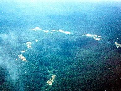 Guyane10.jpg