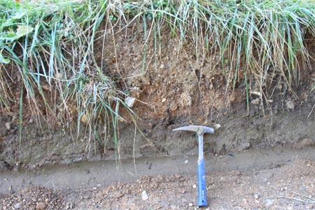 Fig-11-Alluvions-argilo-sableuses-méandre-de-la-Roche-d'or-450.jpg