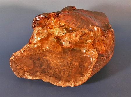 8-ambre du crétacé-1.jpg