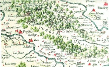 Forêt-de-Chaux-450.jpg