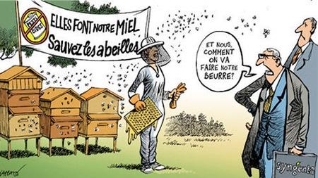 pesticides,néonicotinoïdes,sénat