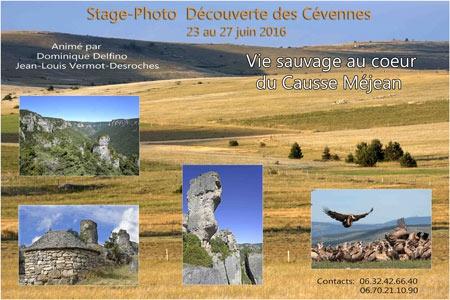 Delfino--BROCHURE-CEVENNES-450.jpg