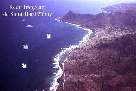 01Récif_frangeant-1.jpg