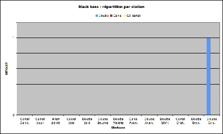 Blackbass_station_effectif-1.jpg