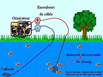 pêche électrique_01-1.jpg