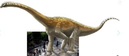 dinosaures,sauropodes,fossiles,pistes,jurassique,jura