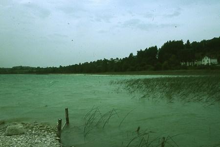 Les lacs de Clairvaux (39) 281757790