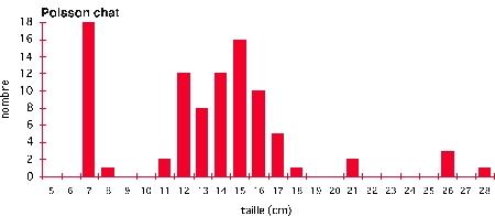 Poisson-chat_échantillon-moyen-canal-1.jpg